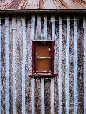 Photograph - Aussie Galvanised Iron #40 by Lexa Harpell