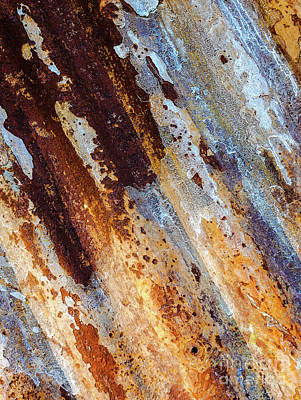 Photograph - Aussie Galvanised Iron #6 by Lexa Harpell