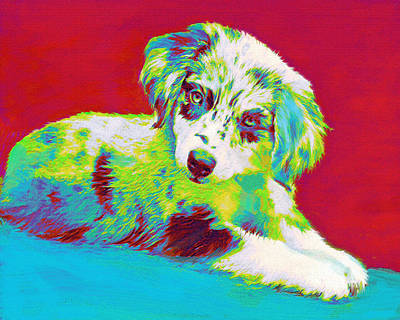 Pups Digital Art - Aussie Puppy by Jane Schnetlage
