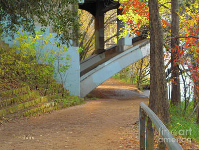 Photograph - Austin Hike And Bike Trail - Under Lamar Street Bridge - Fall Colors by Felipe Adan Lerma
