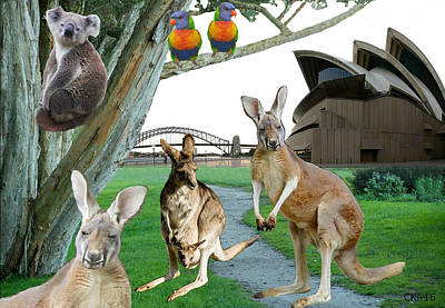 Australia Original by Claudio Kirner
