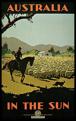 Recently Sold - Animals Royalty-Free and Rights-Managed Images - Australia In the Sun by Percy Tromp