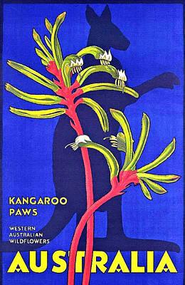 Kangaroo Wall Art - Painting - Australia, Kangaroo Paws by Long Shot