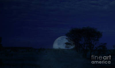 Photograph - Australian Blue Moon by Vicki Ferrari