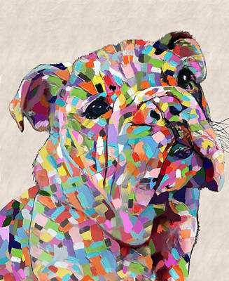 Painting - Australian Bulldog  by Portraits By NC