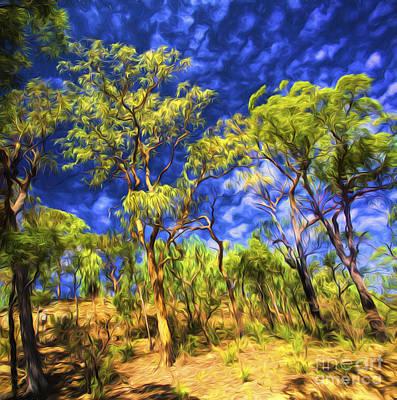 Aussie Digital Art - Australian Bush by Avalon Fine Art Photography