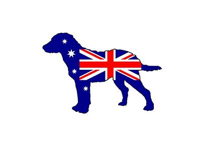 Retrievers Digital Art - Australian Flag - Chesapeake Bay Retriever by Mordax Furittus