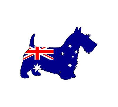 Scottish Dog Digital Art - Australian Flag - Scottish Terrier by Water color Art by TheJollyMarten