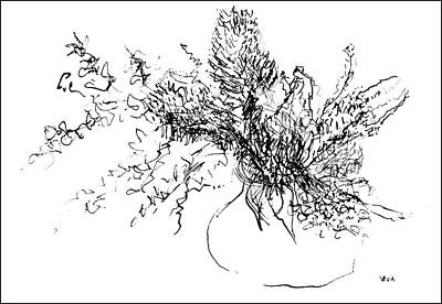 Drawing - Australian Flora Sketch by VIVA Anderson