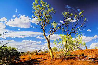 Photograph - Australian Outback One by Rick Bragan