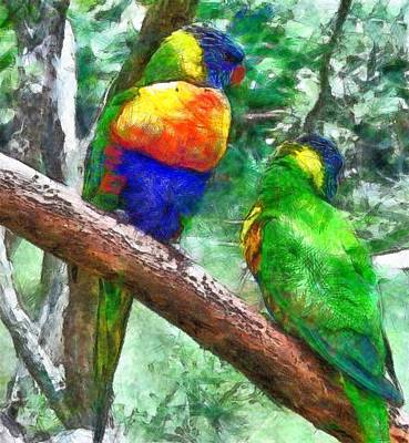 Parakeet Drawing - Australian Parakeets by Anthony Wynn