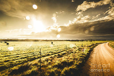 Pasture Scenes Photograph - Australian Rural Dirt Road  by Jorgo Photography - Wall Art Gallery