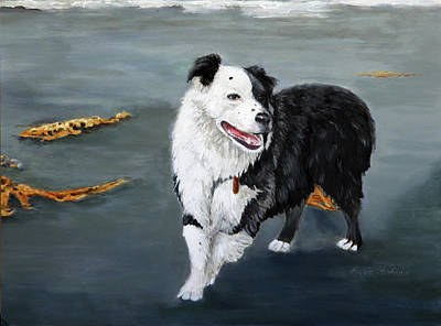 Australian Shepard Border Collie Original by Enzie Shahmiri