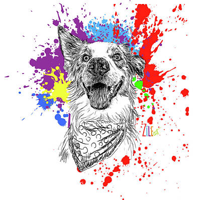 Digital Art - Australian Shepherd @bailey_aussiedog by ZileArt