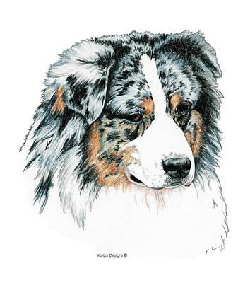 Pop Art Drawings - Australian Shepherd, Blue Merle by Kathleen Sepulveda