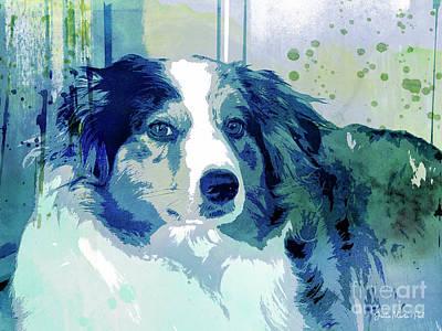 Watercolor Pet Portraits Digital Art - Australian Shepherd by Jutta Maria Pusl