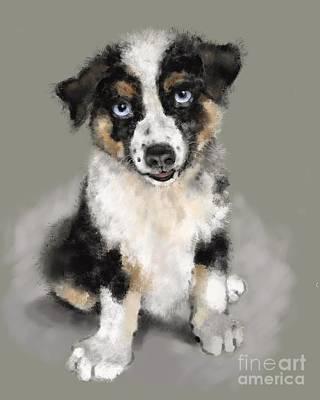Painting - Australian Shepherd Pup by Lora Serra
