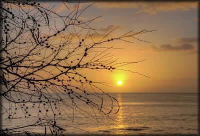 Photograph - Australian Sunrise by Geraldine Alexander