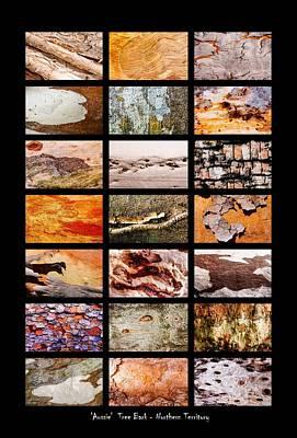 Photograph - Australian Tree Bark - Northern Territory by Lexa Harpell