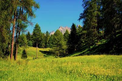 Photograph - Austrian Mountain Meadow by Pezibear