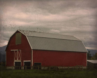 Photograph - Barn 101015243 by Theresa Pausch