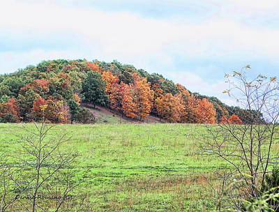 Photograph - Autum On The Hill by Denise Romano