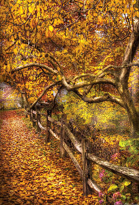 Autumn - Landscape - Country Road Side Art Print by Mike Savad