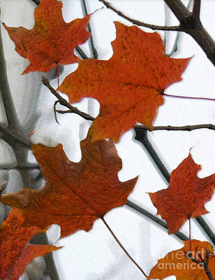 Photograph - Autumn 10 by Jeff Breiman