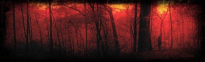 Autumn 2015 Panorama In The Woods Pa 06 Art Print