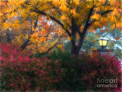Photograph - Autumn 3 by Jeff Breiman