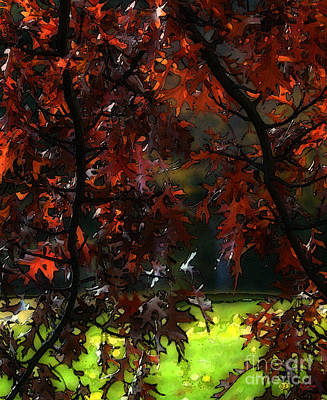 Photograph - Autumn 5 by Jeff Breiman