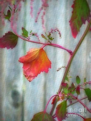 Photograph - Autumn 7 by Jeff Breiman