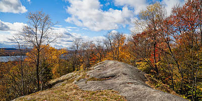 Fir Trees Photograph - Autumn Above Eagle Bay Ny by David Patterson