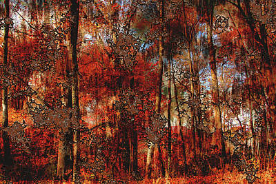 Photograph - Autumn Abstract 2 by HH Photography of Florida