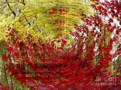 Photograph - Autumn Abstract 5 by Erika H