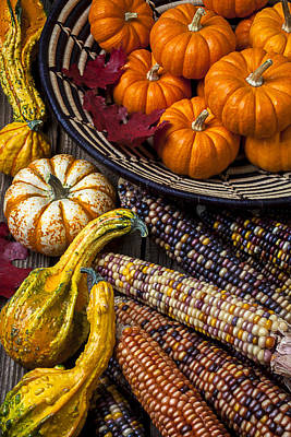 Gourds Photograph - Autumn Abundance by Garry Gay
