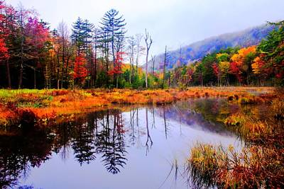 Autumn Adirondack Inlet 2 Print by Tony Beaver