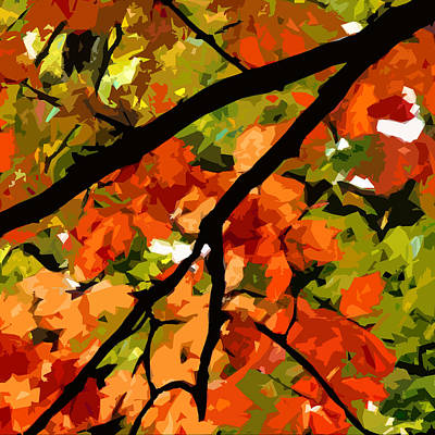 Autumn Ablaze Art Print