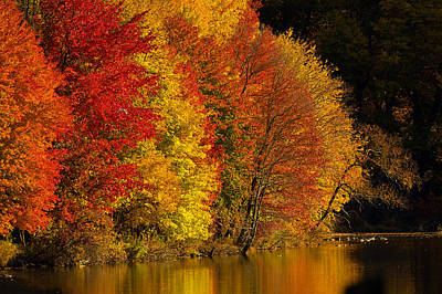 Autumn Afternoon At The Cove Art Print by William Jobes