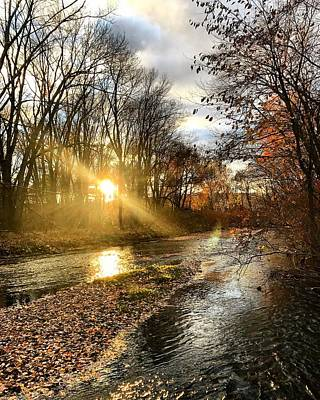 Photograph - Autumn Afternoon Delight. by Mike Valletta