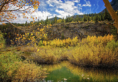 Photograph - Autumn Along Bishop Creek by Lynn Bauer