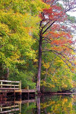 Art Print featuring the photograph Autumn Along Brices Creek by Bob Decker