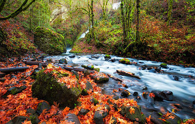 Photograph - Autumn Along Bridal Veil by Dee Browning