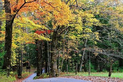 Photograph - Autumn Along Cades Cove Loop Road by Carol Montoya