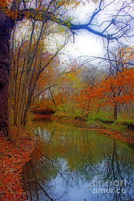 Photograph - Autumn Along Pikes River by Kay Novy