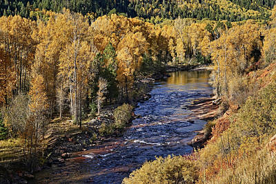 Photograph - Autumn Along The River II by Leda Robertson