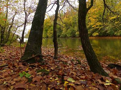 Wall Art - Photograph - Autumn Along The Scioto by Robert Papps
