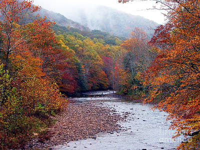 Autumn Along Williams River Art Print
