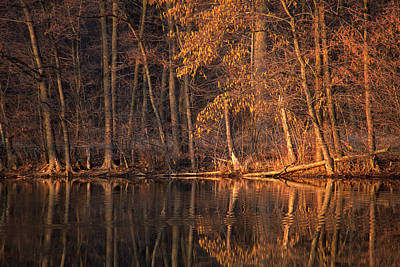 Autumn Photograph - Autumn Amber by Bruce Thompson