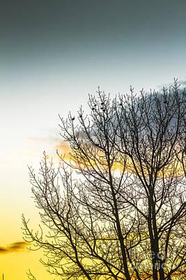 Photograph - Autumn And Dusk  by Jorgo Photography - Wall Art Gallery
